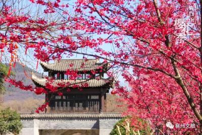 元气午餐、浪漫樱花……鹿门山春日出行计划来了!
