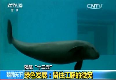 领航十三五——绿色发展:留住江豚的微笑