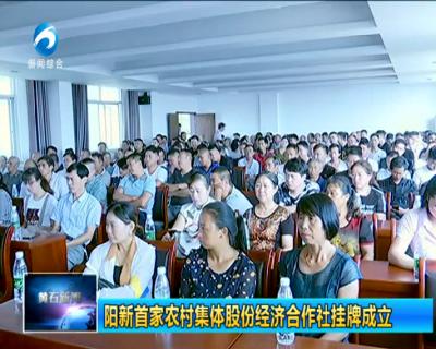 阳新首家农村集体股份经济合作社挂牌成立