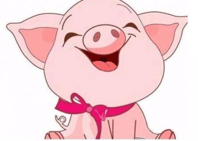"""中国东北首现""""非洲猪瘟"""",食用患病猪肉会致死?"""