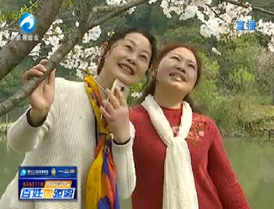 赏浪漫樱花  就去团城山公园吧!