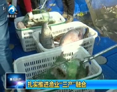 """扎实推进渔业""""三产""""融合"""
