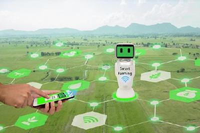 数字技术激发乡村经济新潜能