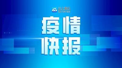 黄石市新冠肺炎最新疫情(截至4月4日24时)