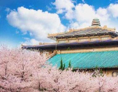 考生注意啦!武汉大学2020年高招答疑小贴士来了