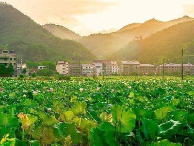 大箕铺入选国家级农业产业强镇