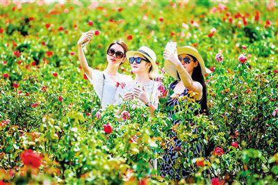 旅游旺季将至 文化和旅游部要求做好景区安全工作