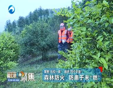 """森林防火 防患于未""""燃"""""""