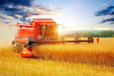 第四个中国农民丰收节将至 丰收的田野是最美的画卷