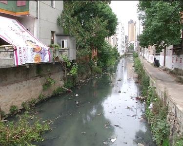 麻城:立行立改整治护城河