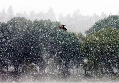 古诗词里的大雪