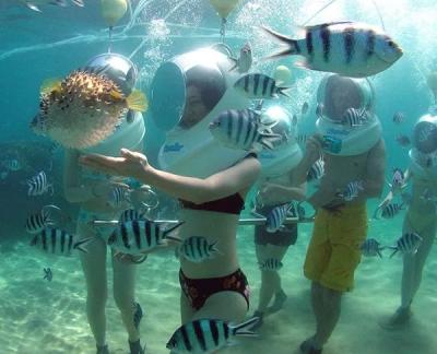 中国女游客泰国潜水溺亡