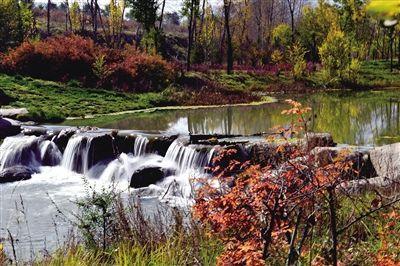 西宁:湿地公园知多少