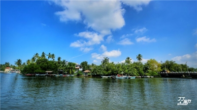 探秘马杜河红树林,寻找印度洋海洋的根
