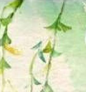 """这100首关于""""春""""的诗词,让孩子读一读"""