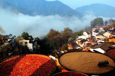 中国最美的99个旅行目的地 走过20个就是旅行达人