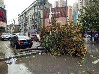 刚刚,黄冈经历了一场疾风骤雨