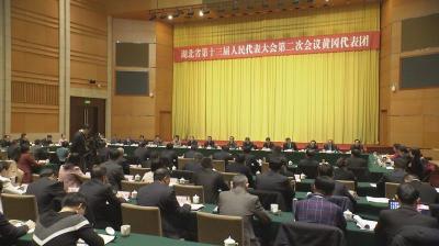 省人大代表徐志新:沿江高铁武汉至合肥段应在罗田设站