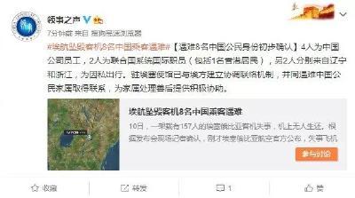 痛心!埃航失事客机遇难8名中国公民身份初步确认