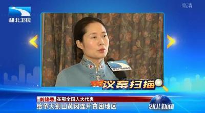 央视《新闻联播》湖北卫视《湖北新闻》聚焦罗田 采访全国人大代表刘锦秀