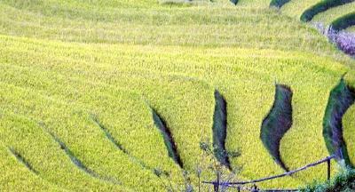 """刘雪荣调研水利工作时强调 千方百计加快项目建设 开创""""五水共治""""新局面"""