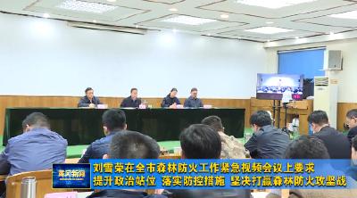 视频︱刘雪荣:提升政治站位 落实防控措施 坚决打赢森林防火攻坚战