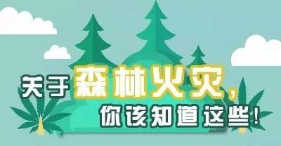 """@黄冈人:防患于未""""燃""""!这些森林防火小知识你必须知道"""