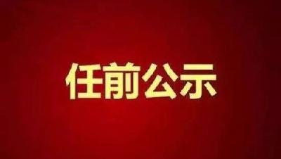 中共湖北省委组织部干部任前公示公告:陈家伟拟任黄冈市委常委