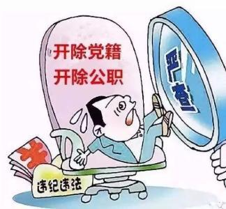 黄梅县农业局原党组成员、县农村能源办公室主任张文成被开除党籍和公职