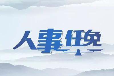 湖北副省长陈安丽跨省赴任黑龙江省委常委、组织部部长