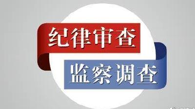 黄冈市公安局黄州分局治安管理大队原大队长孙双英被开除党籍和公职