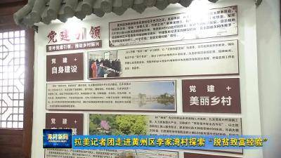"""拉美记者团走进黄州区李家湾村探索""""脱贫致富经验"""""""