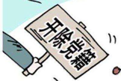 黄梅县蔡山镇农业技术推广服务中心工作人员李彬被开除党籍