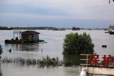 大雨暴雨继续!长江流域共76条河流发生洪水