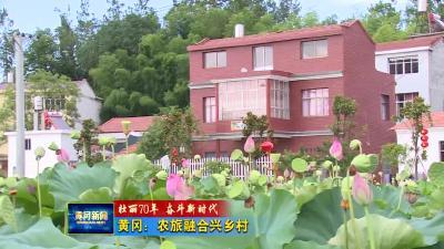 黄冈:农旅融合兴乡村