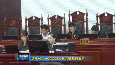 浠水公审一起公职人员涉嫌犯罪案件