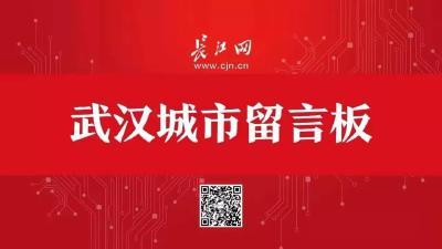 5、6、8、15、16……武汉这些地铁线,有新消息了!