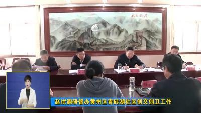 赵斌调研督办黄州区青砖湖社区创文创卫工作