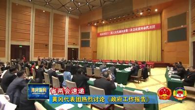 【省两会速递】黄冈代表团热烈讨论《政府工作报告》