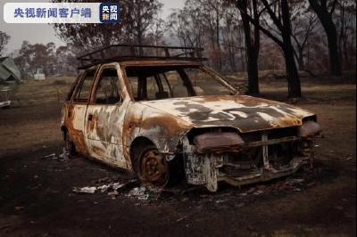 """蓝山变""""黑山"""",森林一片死寂……总台记者深入澳大利亚山火受灾地区"""