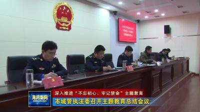 市城管执法委召开主题教育总结会议