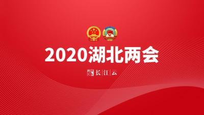 直播 | 湖北省第十三届人大三次会议开幕式