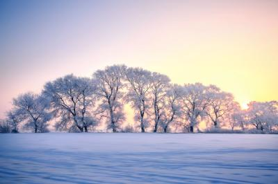 小寒:凄凄岁暮风,翳翳经日雪