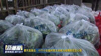 黄冈高新区:48个小区临时党支部成为疫情防控主心骨