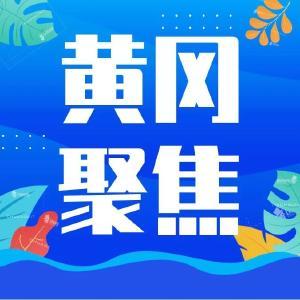 """【黄冈聚焦】""""涉外记者抗疫采访团""""来我市采访"""