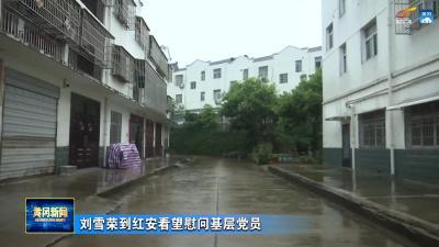 刘雪荣到红安看望慰问基层党员