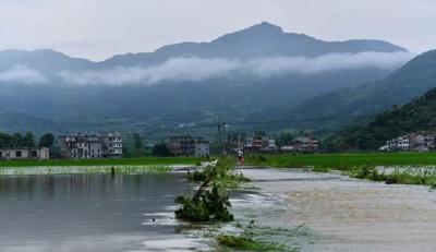 入梅以来连续暴雨致湖北120余万人受灾,经济损失近11亿元