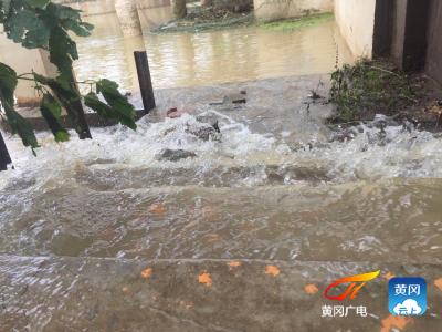 团风城区十里湖工业园泵站过堤漏水险情已控制