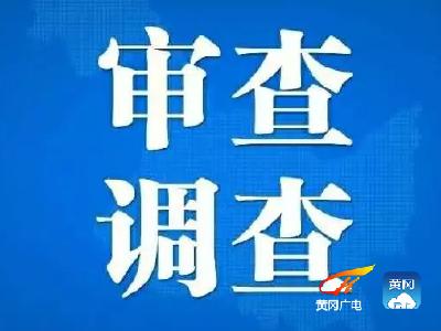 蕲春县民政局3名干部被留置
