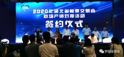 现场签约28个项目!2020年湖北省板栗交易会在罗田开幕